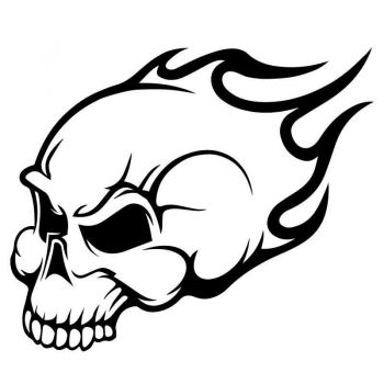 Sticker Skull Flames Decal