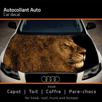 Lion Splash car hood sticker