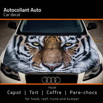Felin Tiger car hood sticker
