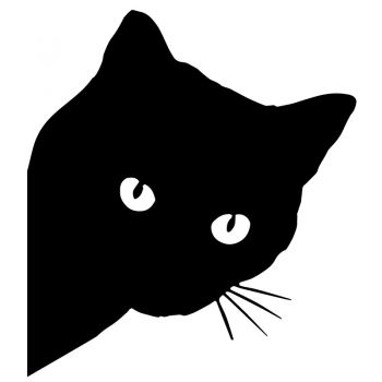JDM Black Cat Decal