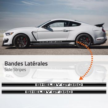 Ford Mustang Shelby GT350 Stripes Decals